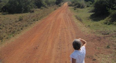 Woman looking down a dirt road
